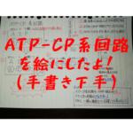 ATP-CP系回路図001
